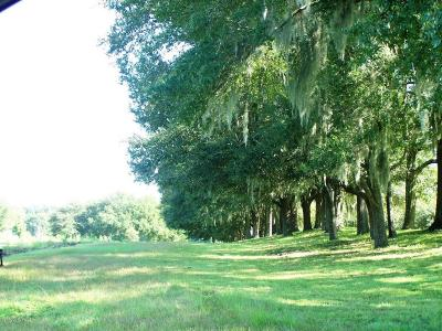 Residential Lots & Land Sold: 20820 SW 5th Place