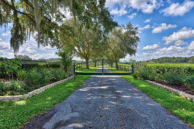 Ocala Farm For Sale: 11122 W Hwy 326