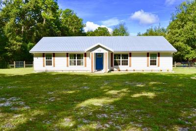 Micanopy Single Family Home For Sale: 102 SW Ed Glover Street