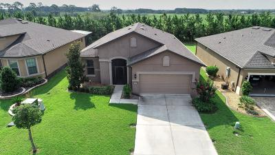 Stone Creek Single Family Home For Sale: 9193 SW 70th Loop