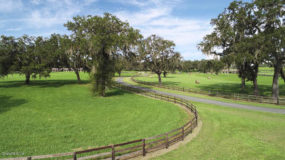 Belleview Farm For Sale: 12380 SE 36th Avenue