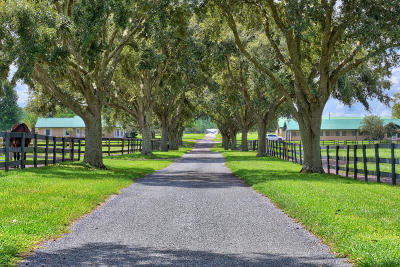 Ocala Farm For Sale: 11130 W Hwy 326