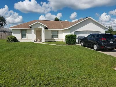 Ocala Single Family Home For Sale: 22 Chestnut Pl Place