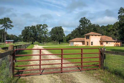 Ocala Farm For Sale: 6720 NW 44th Avenue
