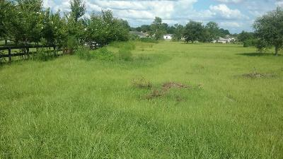 Belleview Residential Lots & Land For Sale: SE 99th Place Place