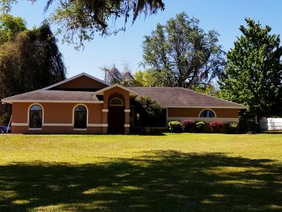 Ocala Single Family Home For Sale: 385 NE 58th Street