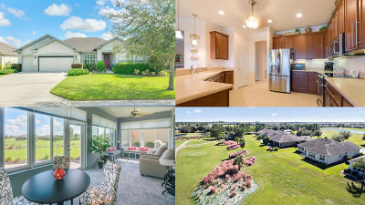 Ocala Single Family Home For Sale: 7051 SW 97th Terrace Road