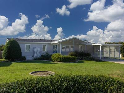 Belleview Mobile/Manufactured For Sale: 13269 SE 49th Court