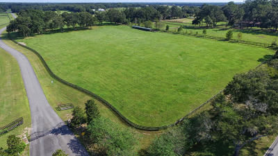 Citra Residential Lots & Land For Sale: 1551 E Hwy 316