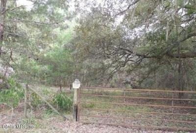 Residential Lots & Land For Sale: County Road 219-A