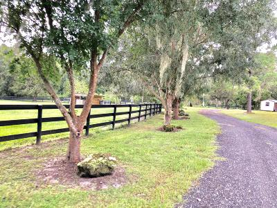 Ocala Farm For Sale: 8798 W Hwy 326