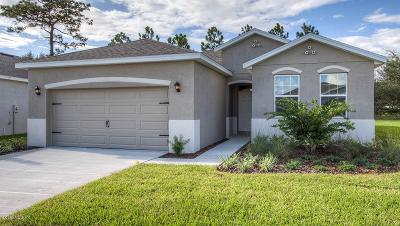 Ocala Single Family Home For Sale: 9098 SW 60th Court Road