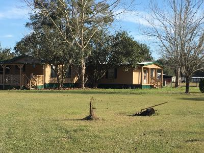 Ocklawaha Single Family Home For Sale: 16900 SE 95th Street Road