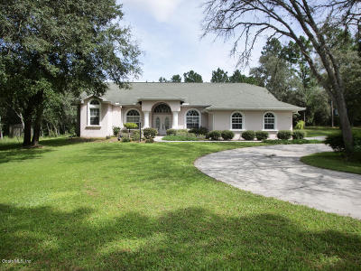 Hernando Single Family Home For Sale: 141 E Shawna Court