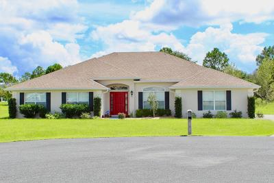 Meadow Glenn Single Family Home For Sale: 9951 SW 56th Court