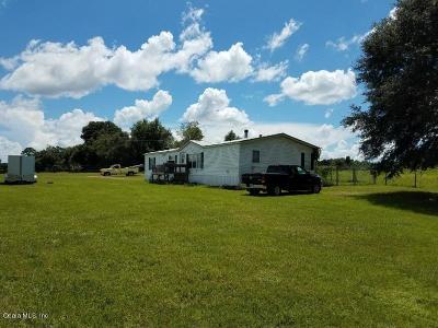 Ocklawaha Single Family Home For Sale: 12050 SE 123rd Avenue