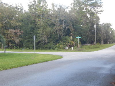 Citrus County Residential Lots & Land For Sale: 1315 E Bismark Street