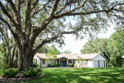Hernando Single Family Home For Sale: 585 E Foresthill Place