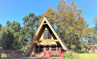 Ocala Single Family Home For Sale: 3648 SW 89th Avenue