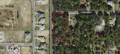 Citrus County Residential Lots & Land For Sale: 984 W Massachusetts Street