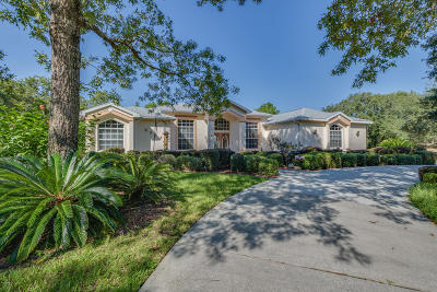 Citrus County Single Family Home For Sale: 5386 N Lena Drive