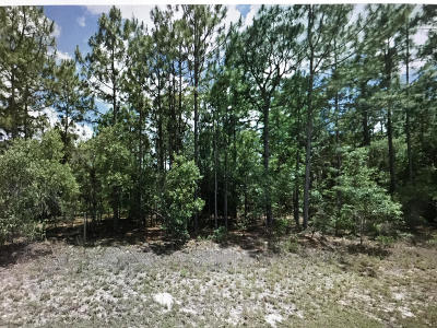 Citrus County Residential Lots & Land For Sale: 1508 W Donner Drive