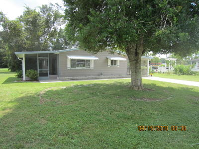 Ocala Single Family Home For Sale: 10381 SW 87 Terrace