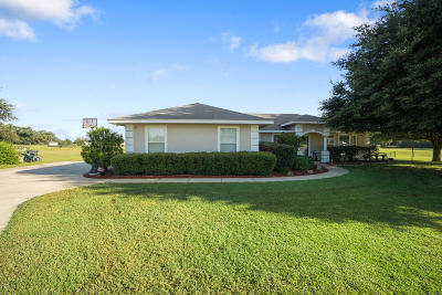Belleview Single Family Home For Sale: 6911 SE 99th Place