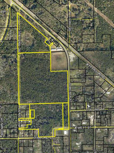 Residential Lots & Land For Sale: SE Us 41 Hwy