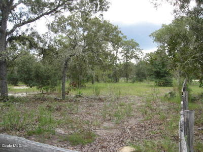 Dunnellon Residential Lots & Land For Sale: 13290 SE 103rd #12