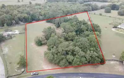 Ocala Residential Lots & Land For Sale: SW 93rd Street Road
