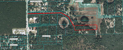 Umatilla FL Residential Lots & Land For Sale: $20,000