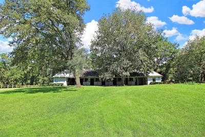 Ocala Farm For Sale: NW 100th Avenue