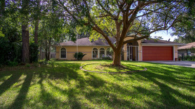 Dunnellon Single Family Home For Sale: 9976 SW 182nd Circle