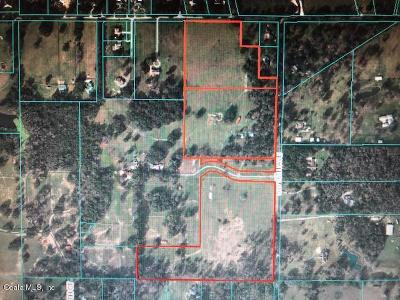 Ocala Residential Lots & Land For Sale: 8350 SW 16th Ave