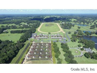 Summereffield, Summerfield, Summerfield Fl, Summerfiled Farm For Sale: 15400 S Highway 301