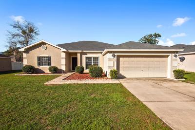 Ocala Single Family Home For Sale: 6738 SW 64th Avenue