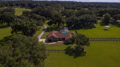 Ocala Farm For Sale: 9715 SW 27th Avenue