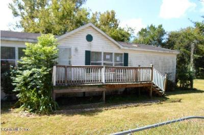 Belleview Other For Auction: 10810 SE 129th Street