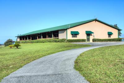 Dunnellon Farm For Sale: 7600 SW 140th Avenue