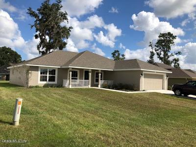 Belleview Single Family Home For Sale: 3835 SE 99th Street