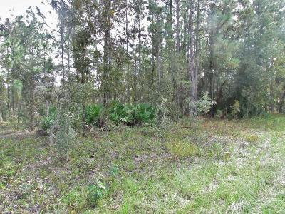 Citrus County Residential Lots & Land For Sale: 5709 N Velveteen Point