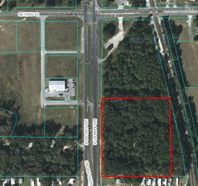 Summereffield, Summerfield, Summerfield Fl, Summerfiled Residential Lots & Land For Sale: 16649 Us 301