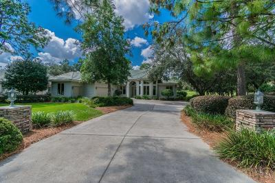 Citrus County Single Family Home For Sale: 3842 N Baltusrol Path Path