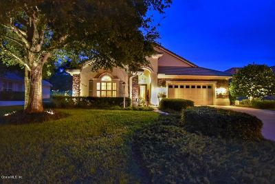 Citrus County Single Family Home For Sale: 1619 N Dimaggio Path Path