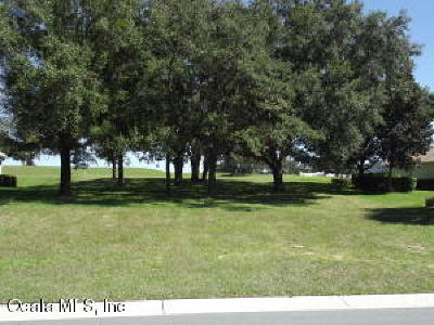 Citrus County Residential Lots & Land For Sale: 1995 N Gibson Point