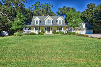 Silver Springs Single Family Home For Sale: 17962 SE 28th Lane Road
