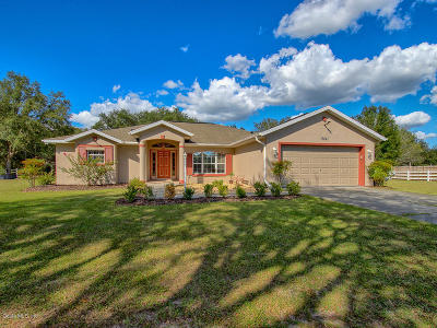 Dunnellon Single Family Home For Sale: 13841 SW Hwy 484