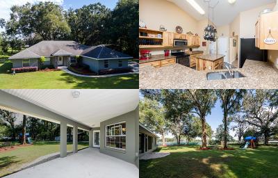 Ocala Single Family Home For Sale: 6595 NE Jacksonville Road