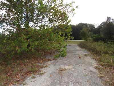 Citra Residential Lots & Land For Sale: 17090 N Us Hwy 301